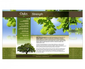 Oaks Financial Management Website Design