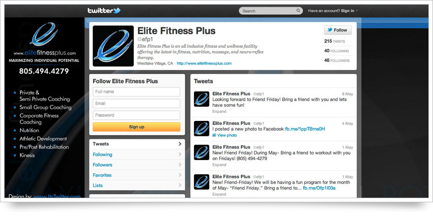 Elite Fitness Plus Twitter Skin
