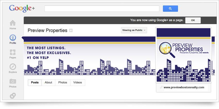 Preview Properties Google Plus Skin