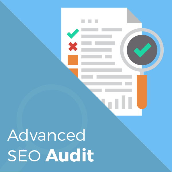 advanced-seo-audit-store-graphic