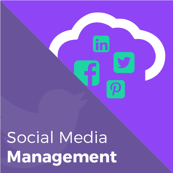 sm-management-store-graphic